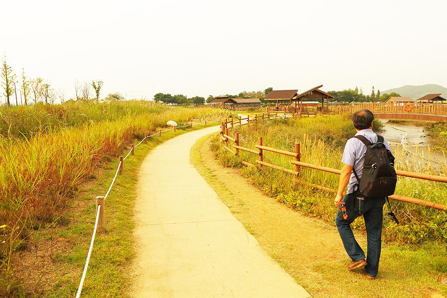 一位男人在河溝生態公園內步道而行