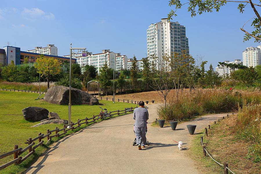 一位男人在鳥山支石墓公園推嬰兒車的背影
