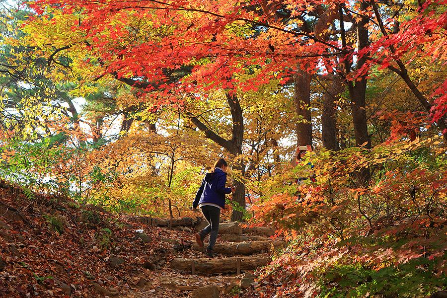 一位女人上爬南漢山城的登山路爬山