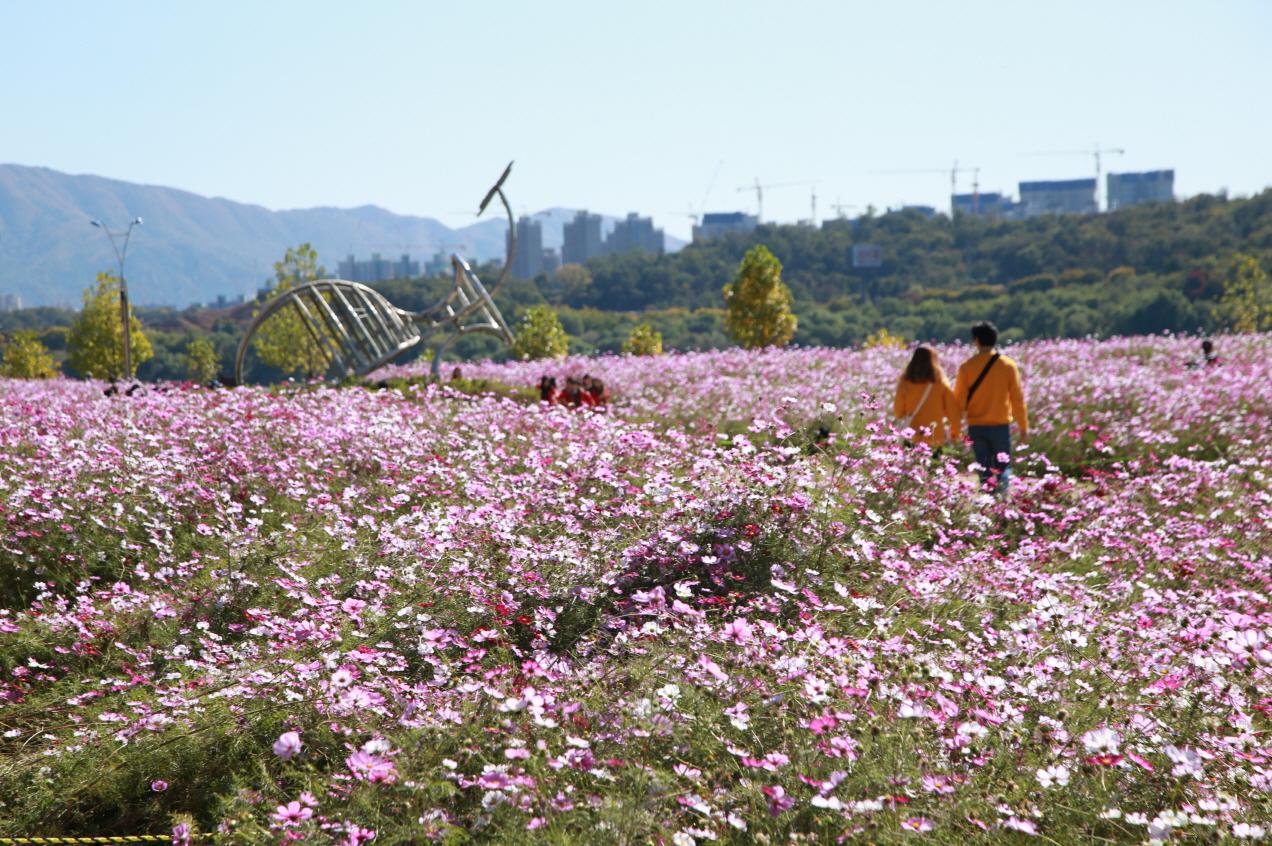 구리한강시민공원 사진1