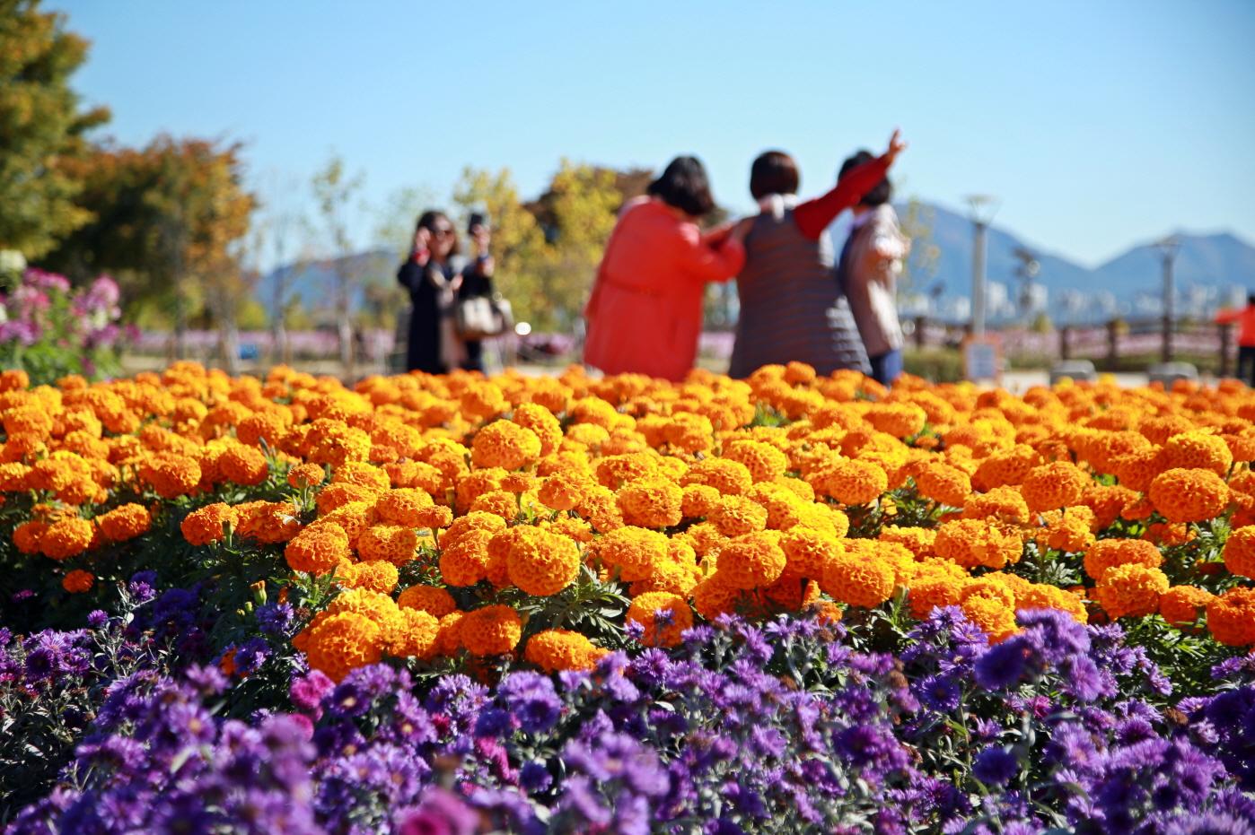 구리한강시민공원 사진3