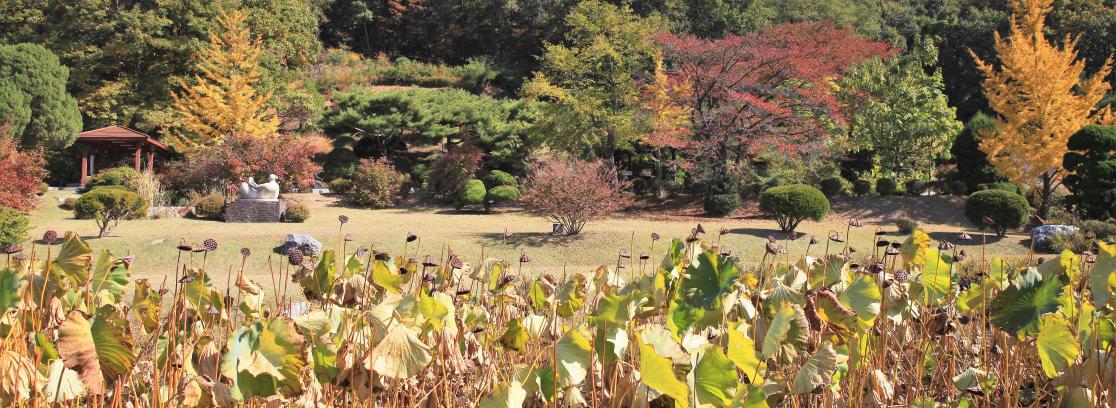 김포다도박물관 사진3