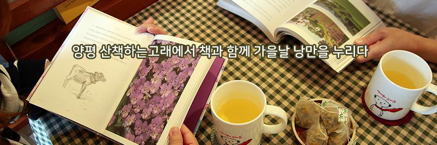 양평 산책하는 고래에서 책과 함께 가을날 낭만을 누리다