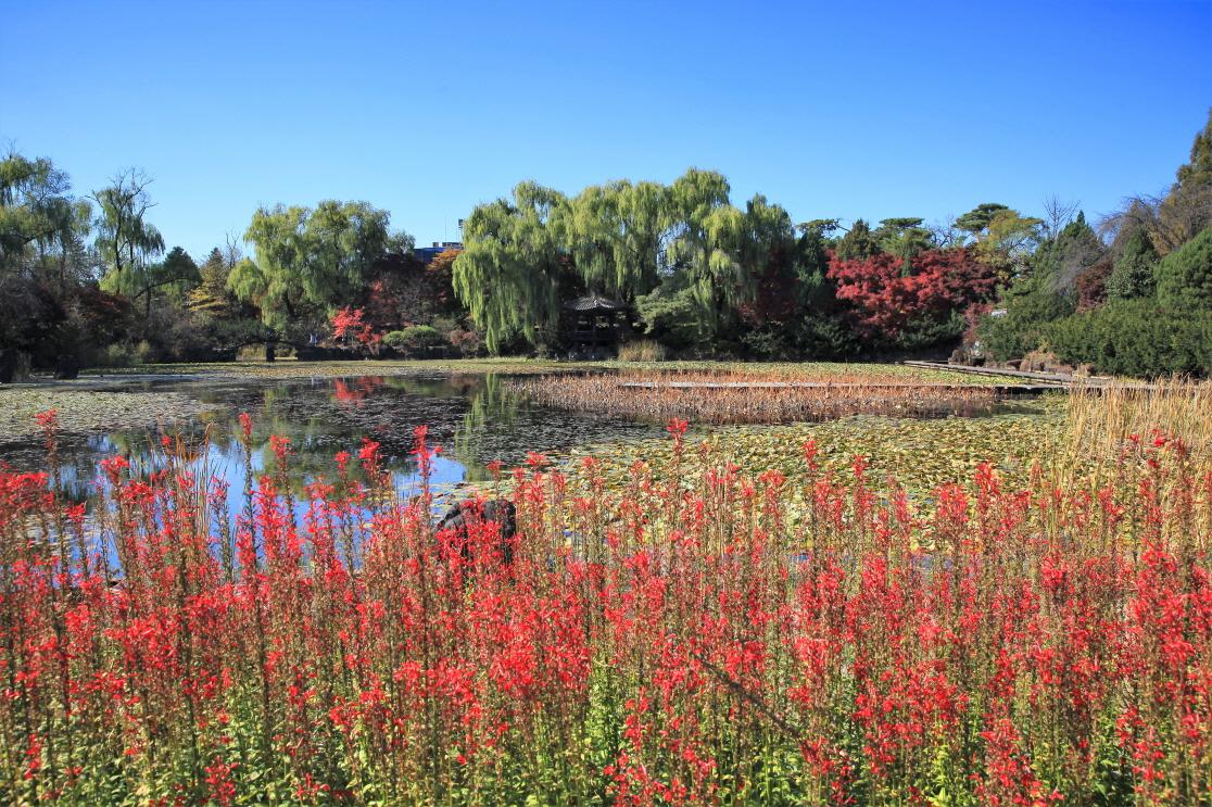 벽초지문화수목원 사진2