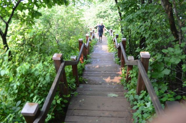 나무계단을 오르는 등산객의 모습