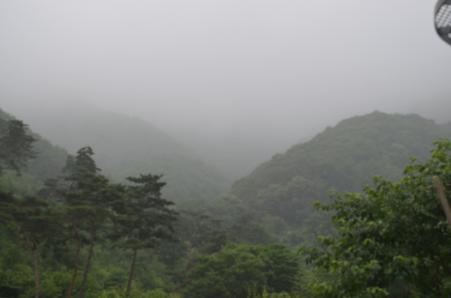 안개가 낀 산의 모습