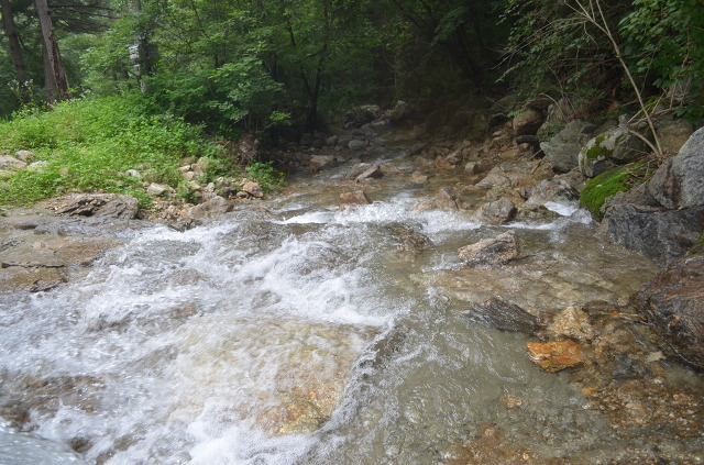 시원하게 흐르는 계곡의 물줄기