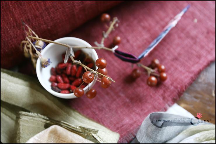 열매의 모습
