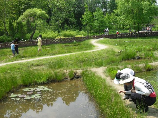 연못의 모습