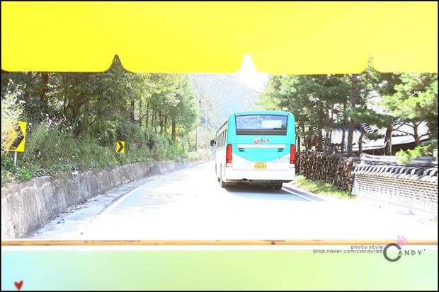 경기버스의 모습