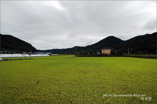 푸른들판과 시골풍경