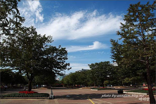 푸른하늘의 모습
