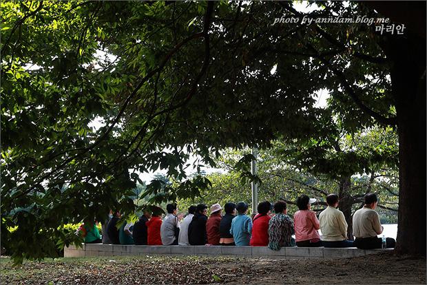 나무 아래 앉아있는 관객들의 뒷모습