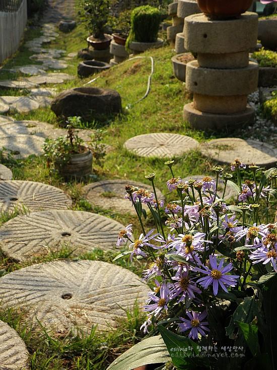 야생화와 돌로 만든 산책로