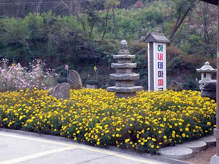하내테마파크 안내판과 노란꽃들