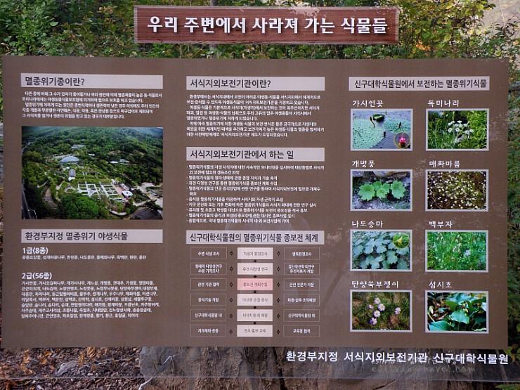 우리 주변에서 사라져 가는 식물들에 대한 안내판