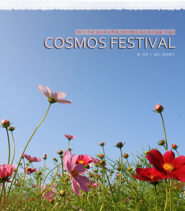 2011 구리 코스모스 축제, 5만여평의 코스모스길을 거닐다. 글,사진 / 낯선, 감성찾기