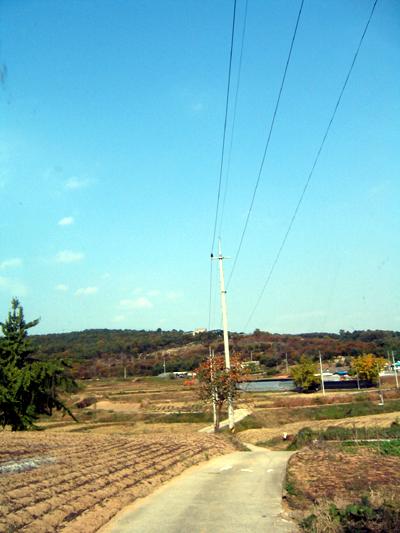 시골풍경의 모습
