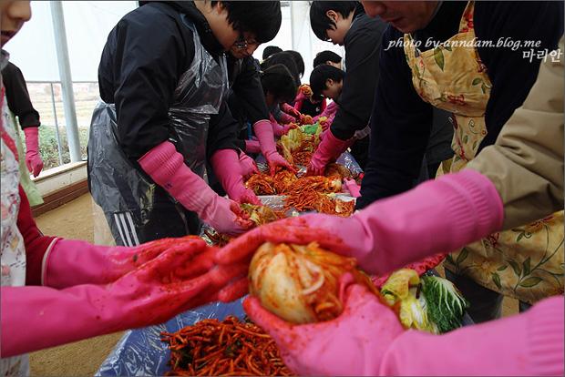 김치를 만드는 사람들의 모습