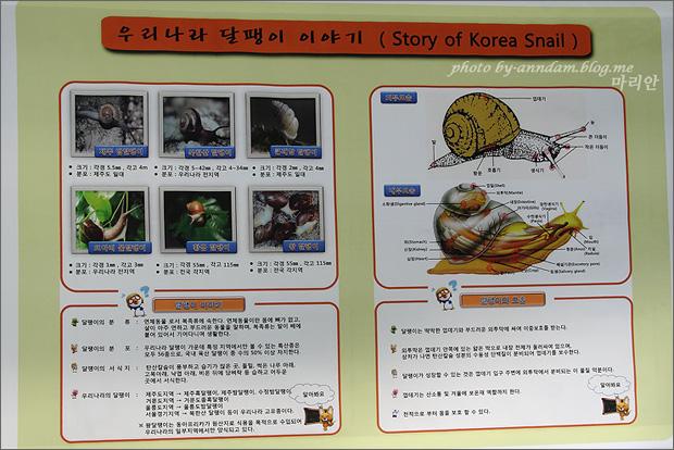 우리나라 달팽이 이야기에 대해 적어놓은 현수막
