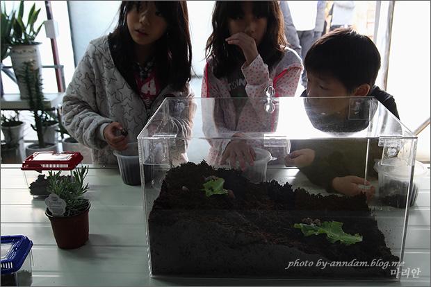 유리관 안에 달팽이와 구경하는 아이들의 모습