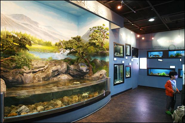 박물관 내 수조들의 모습