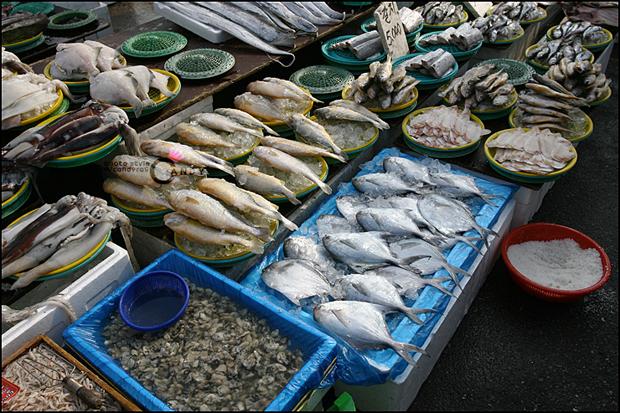 해산물들의 모습