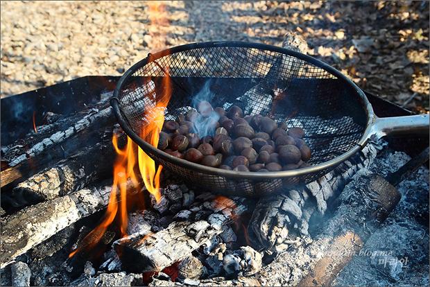 알밤을 굽는 모습
