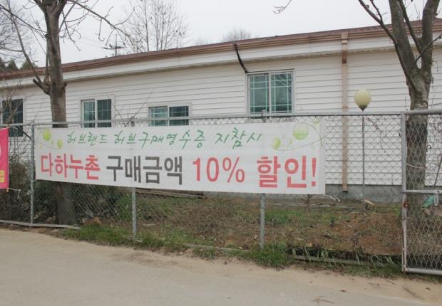 허브랜드 허브구매영수증 지참시 다하누촌 구매금액 10%할인 현수막