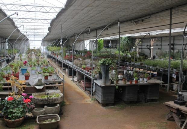 허브농원의 모습