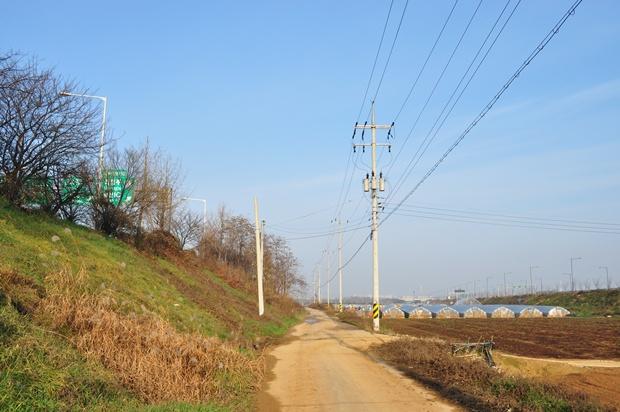 길과 오른쪽으로 보이는 밭