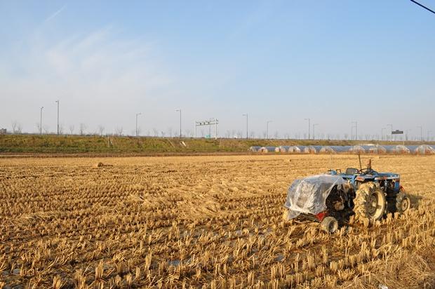 밭의 모습