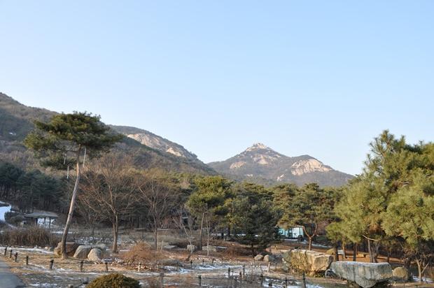 수목원 뒤로 보이는 산의 모습