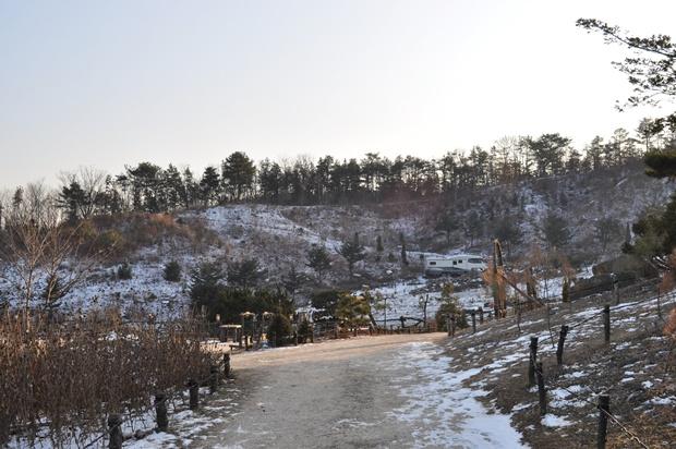 눈이 쌓인 수목원 모습