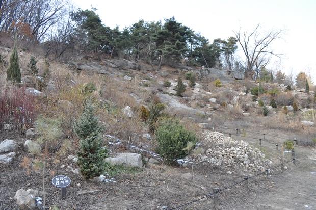 암석원의 모습