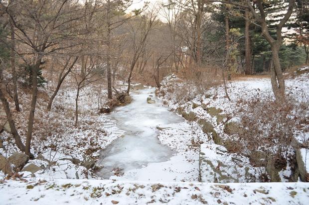 겨울의 계곡 풍경
