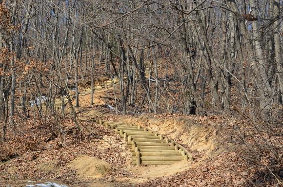 등산로의 모습
