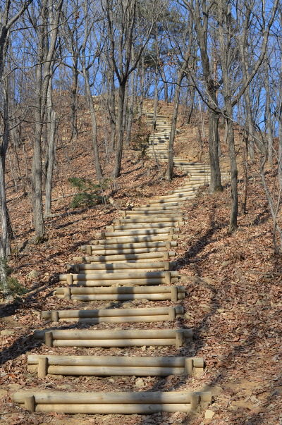 등산로 계단의 모습