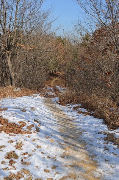 눈이 쌓인 산길의 모습