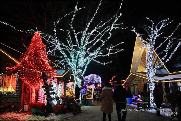 나무마다 불빛이 켜져있다.
