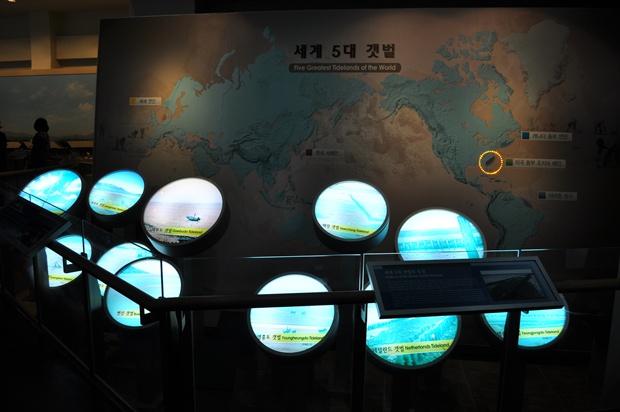 세계 5대 갯벌에 대한 설명과 지도