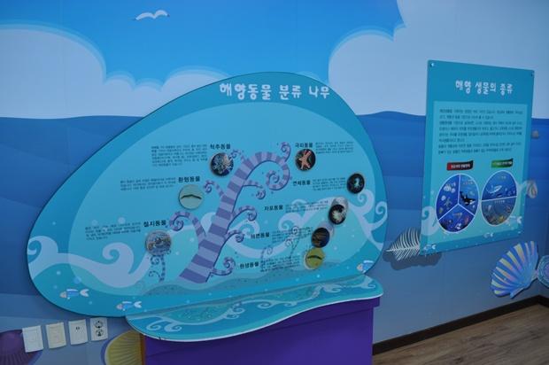 해양동물 분류 나무와 해양 생물의 종류