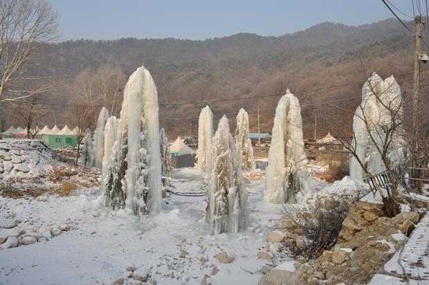 얼음 나무들의 모습
