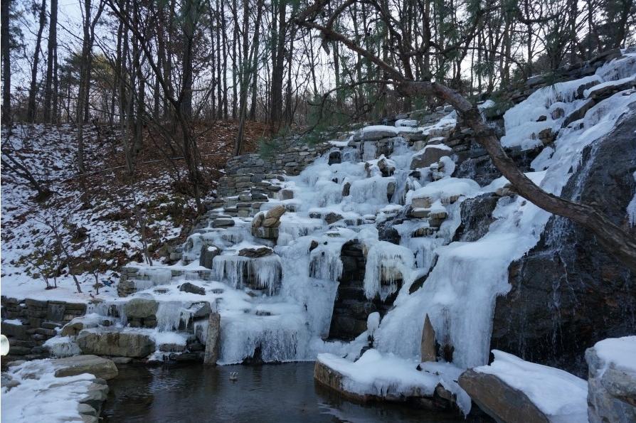 물이 흘러내리는 모양으로 얼음이 얼어 있는 연못가의 모습