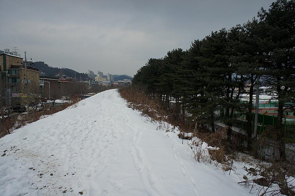 눈밭길의 모습