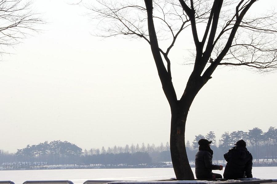 호수공원과 나무밑 벤치에 앉아 휴식을 취하는 사람들의 모습