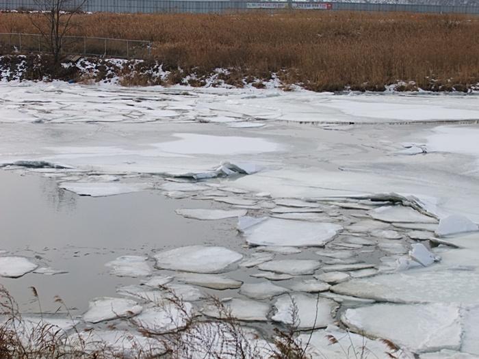 얼음이 얼어있는 연못의 모습