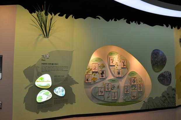 벽면에서 볼 수 있는 안양천의 식물들이 전시되어 있는 모습