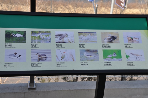다양한 새들과 이름이 나와 있는 판넬의 모습