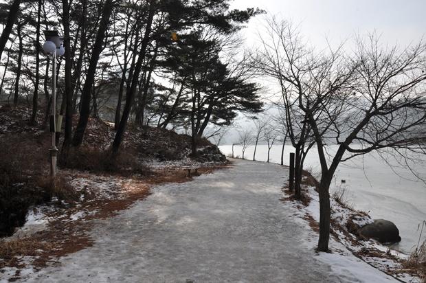 눈이 깔려 있는 산책로의 모습